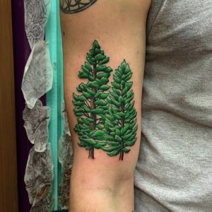 Pine Tree Tattoo Images