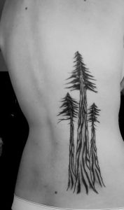 Pine Tree Tattoo Ribs