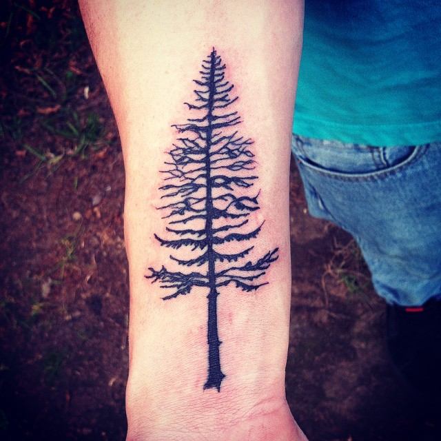 Underarm Tattoos Designs Ideas And Meaning: Pine Tree Tattoos Designs, Ideas And Meaning