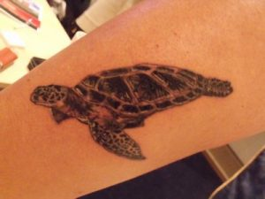Sea Turtle Tattoo Pictures