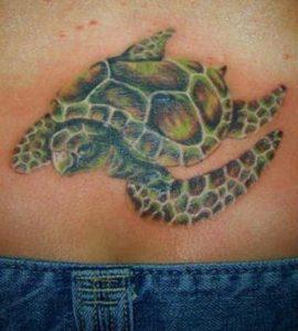 Sea Turtle Tattoos for Women