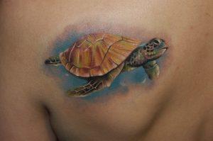 Sea Turtles Tattoo