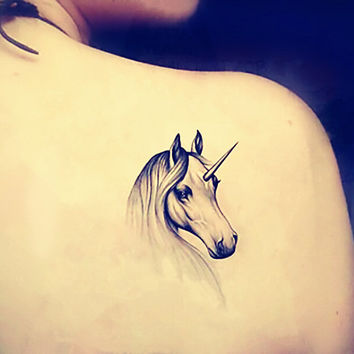 Unicorn Symbolism amp Unicorn Meaning In World Tradtions