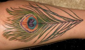Tattoos of Peacock Feathers