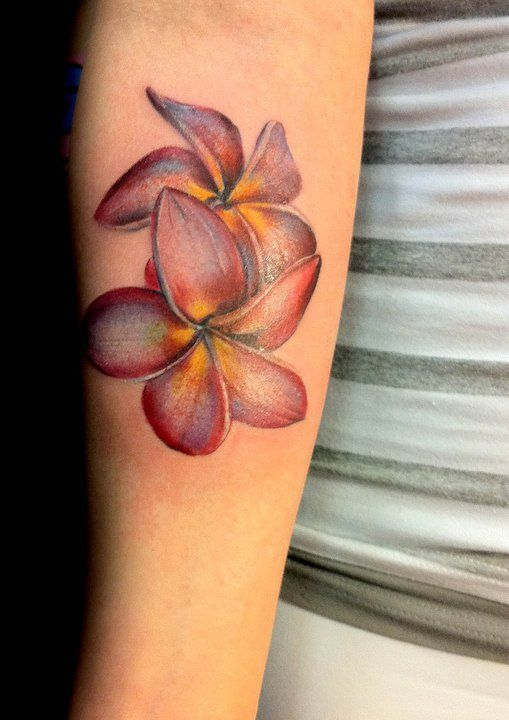 Plumeria Flower Tattoo Ankle: Plumeria Tattoos Designs, Ideas And Meaning