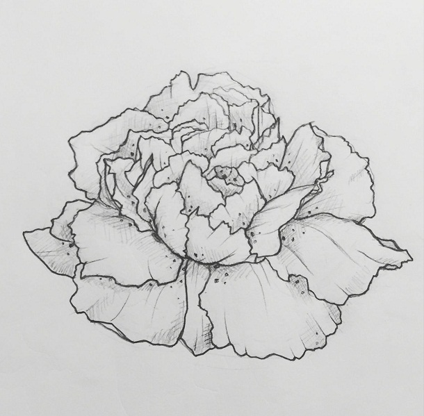 Carnation Tattoos Designs, Ideas and Meaning | Tattoos For You  Carnation Tatto...