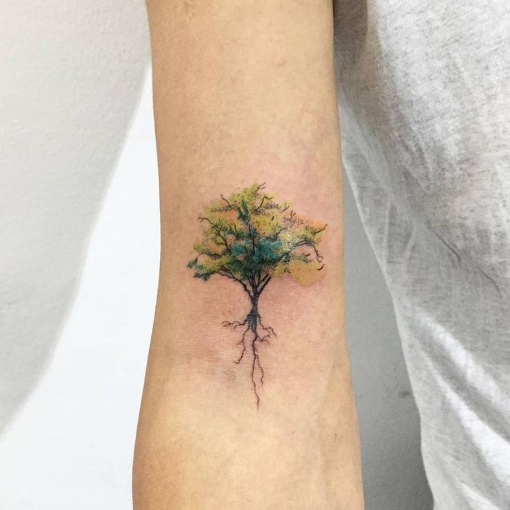 Watercolor Tree Tattoo Designs Ideas And Meaning Tattoos For You