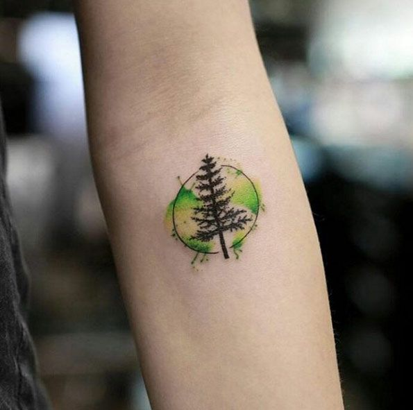 Watercolor tree tattoo designs ideas and meaning for Pine tree tattoo ideas