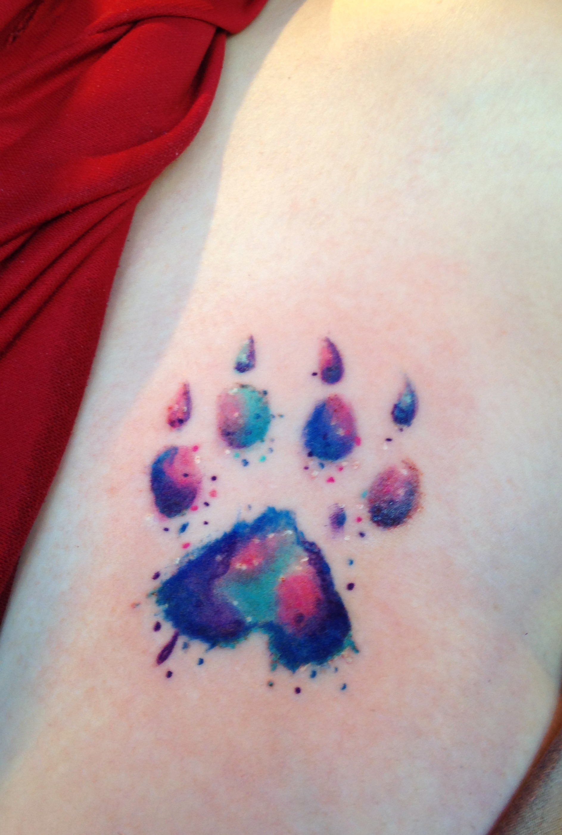 watercolor paw print designs ideas and meaning