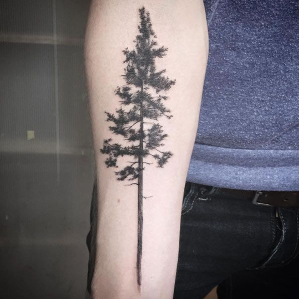 Forearm Tree Tattoo Designs Ideas And Meaning Tattoos For You