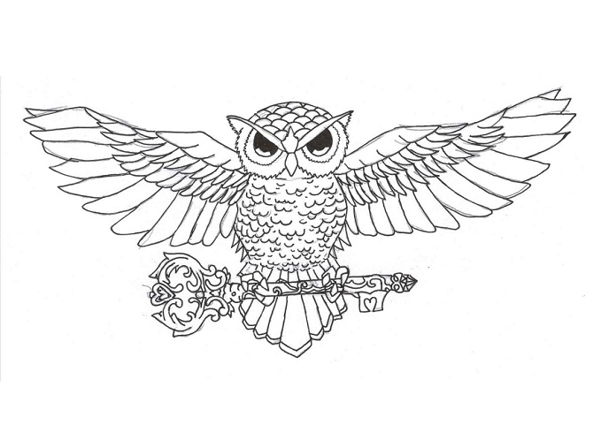 Owl Chest Tattoo Sketch