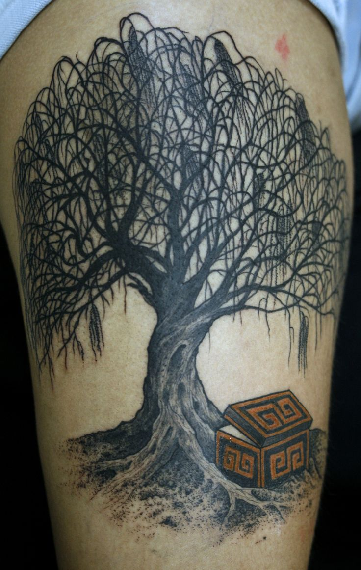Weeping Willow Tattoo Designs Ideas And Meaning Tattoos