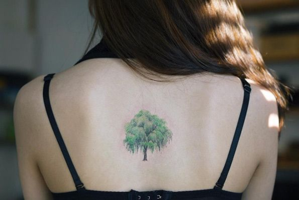 Weeping Willow Tattoo Designs, Ideas and Meaning | Tattoos For You