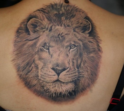 lion tattoo for girl designs ideas and meaning tattoos for you. Black Bedroom Furniture Sets. Home Design Ideas